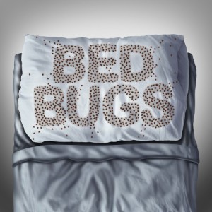 bed bug control irvine ca